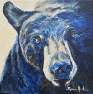 Regard suppliant de l'ours